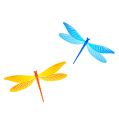 Blue and yellow dragonfly isolated vector