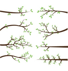Branch Silhouettes Elements vector