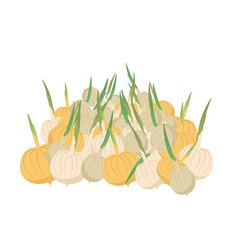 Bunch onion lot of vegetables big crop on farm vector