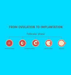 cartoon in vitro fertilization card poster vector image