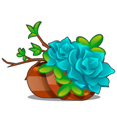 clay flower pots with a composition twigs and vector image