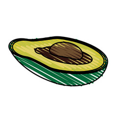 Color crayon stripe slice avocado fruit food vector