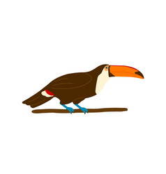 colorful toucan sitting on branch flat vector image