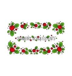 Cranberry line art vector