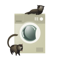 Cute cats with washing machine vector