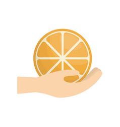 hand holding orange fruit vector image