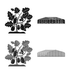 Isolated object of greenhouse and plant icon vector