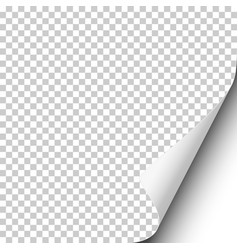 Page curl on blank transparent sheet of paper vector