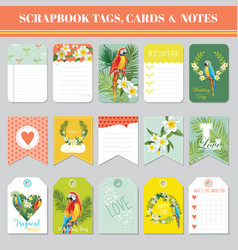 Tropical flowers and parrots theme for tags cards vector