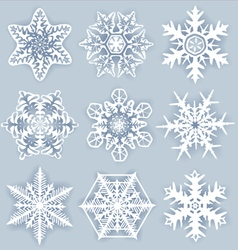 Crystal snowflakes vector image vector image