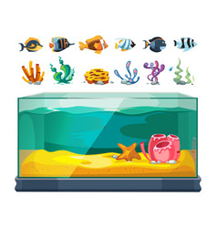 aquarium bundle exotic fishes seaweeds vector image