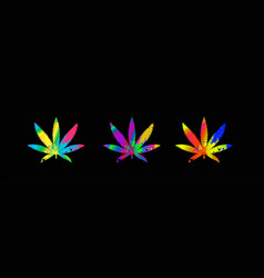cannabis leaves on multicolored gradient vector image