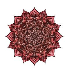 circular pattern pink floral mandala on white vector image