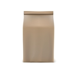 Classic paper bag vector image vector image