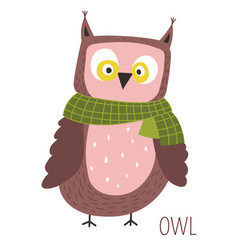 Owl with scarf childish cartoon book character vector