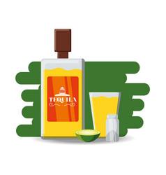 tequila bottle salt and slice of lime vector image
