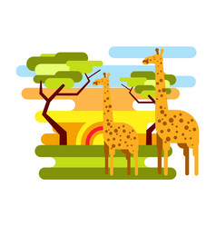 african savannah safari and giraffe summer vector image vector image