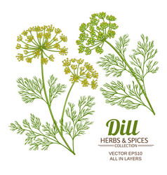 Dill plant set vector