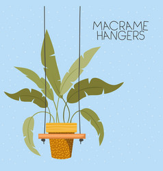 Houseplant in macrame hangers vector