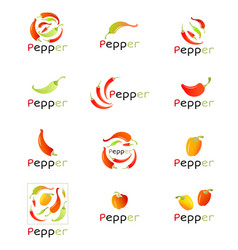 Red peppers on white background chili pepper vector