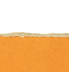 Ripped Paper vector image