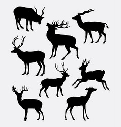 deer animal activity silhouette vector image vector image