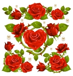 Red Rose design elements vector image