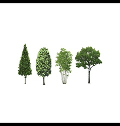 Set of trees isolated vector image vector image