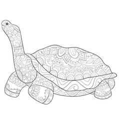 Adult coloring bookpage a cute turtle image vector