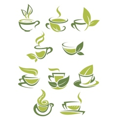 collection green or organic tea icons vector image