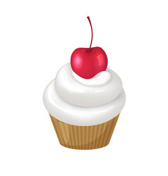 Cupcake with whipped cream swirl and cherry on top vector