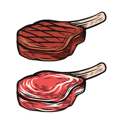 Fresh and cooked meat steak vector
