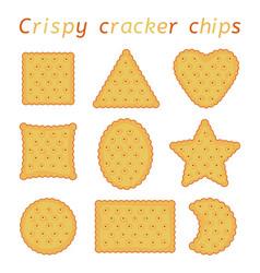 Set baked cracker chips different shapes vector
