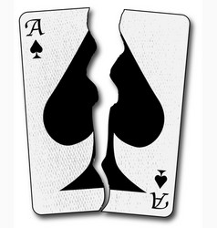 torn playing card vector image