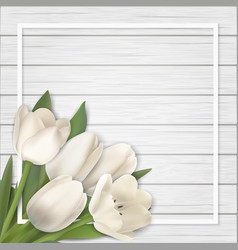 white tulips bouquet on wooden background vector image