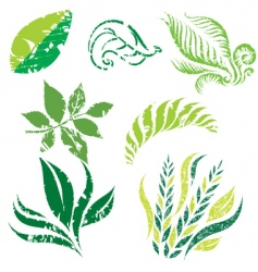 plant design elemets vector image vector image