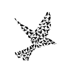 birds silhouettes group vector image