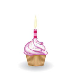 birthday cupcake with candle vector image