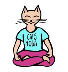 cats yoga vector image vector image
