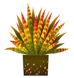 A house plant vector