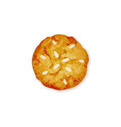 almond cookie vector image