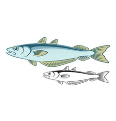 Blue whiting vector