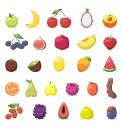 Fruits berries vector image