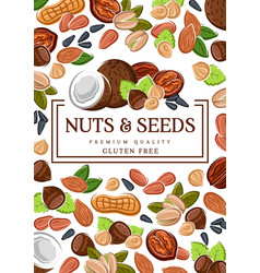 Gluten free food vegan raw seeds and nuts vector
