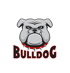 Logo bulldog head vector
