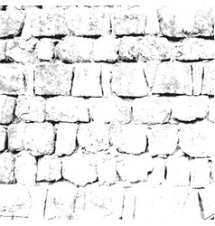 monochrome grayscale texture vector image