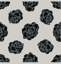 seamless pattern with hand drawn stylized brassica vector image