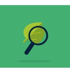 Magnifying Glass and Leaf Education Concept vector image