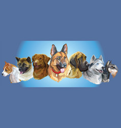 big and small dog breeds panorama2 vector image