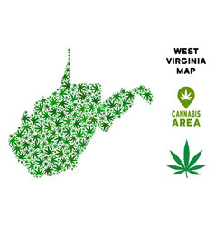 Cannabis collage west virginia state map vector